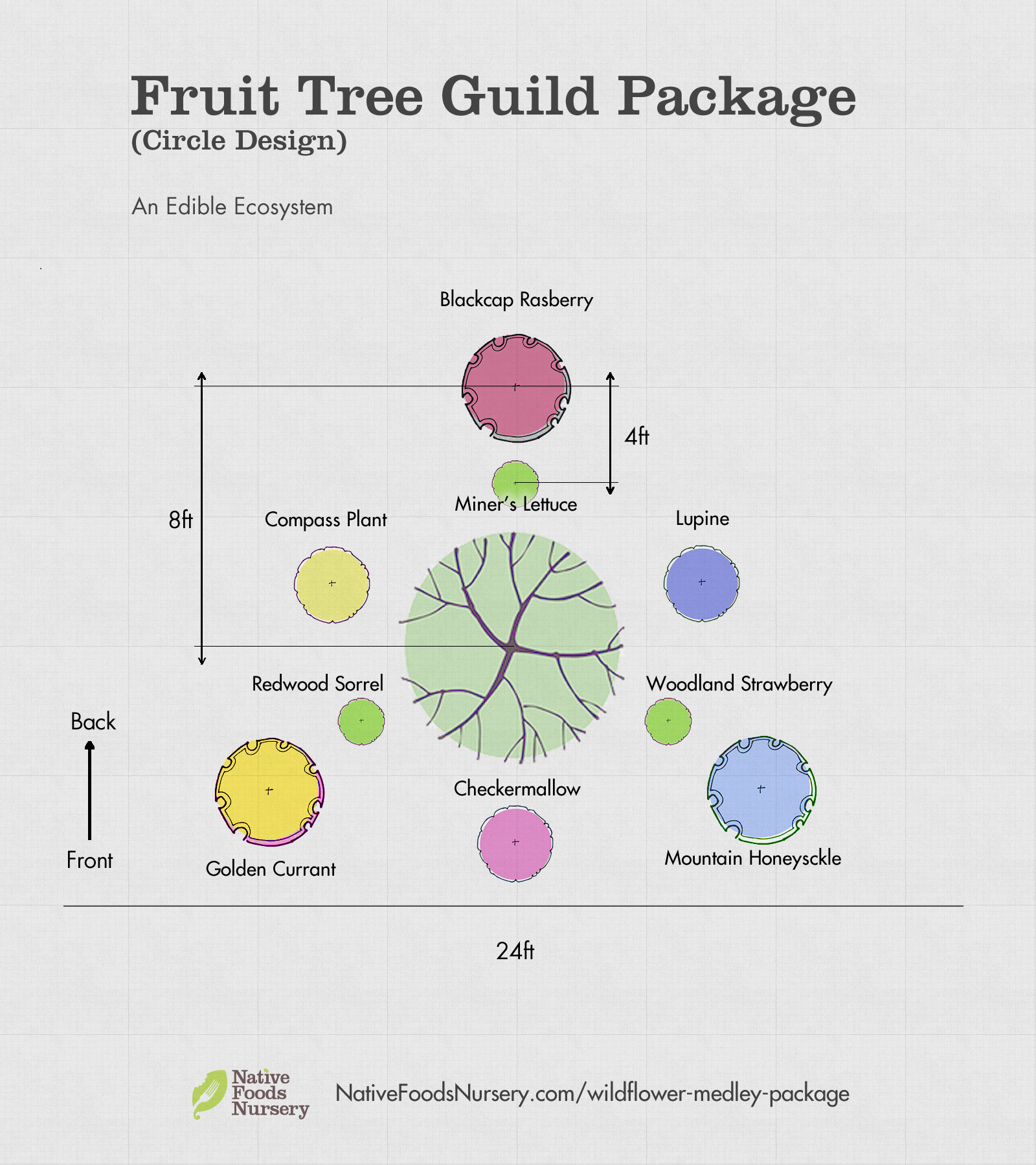 fruit-tree-guild-package.jpg
